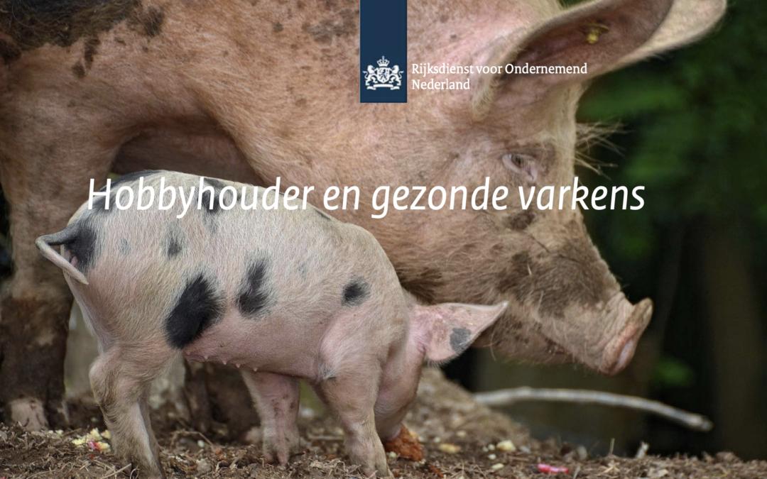 Flyer Hobbyhouder en gezonde varkens