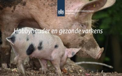 Hobbyhouder en gezonde varkens